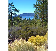 FALL COLORS SPECTACULAR IN BIG BEAR LAKE Photographic Print