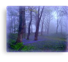Rainy Morning at Blackbury Camp Canvas Print