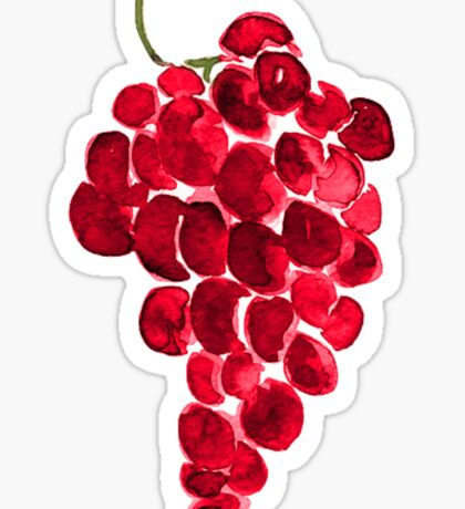 Grape Vine Sticker