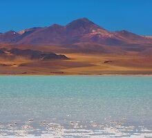 Atacama Salt Lake by Dave Hare