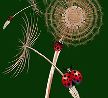DANDELION and Hitchhicking ladybugs by Lotacats