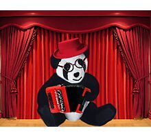 POPPA PANDA PLAYS ACCORDION PICTURE  Photographic Print