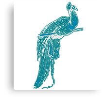 Peacock Illustration in Turquoise Canvas Print