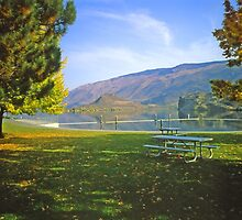 Okanagan Fall 1 by Priscilla Turner