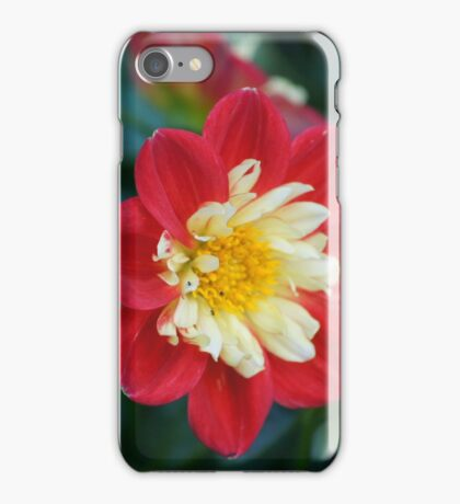 Flower pictures iPhone Case/Skin