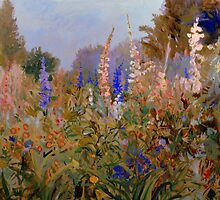 Delphiniums by Michele Taylor
