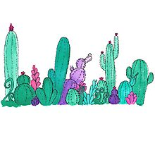 Watercolour Cacti and Succulents Photographic Print