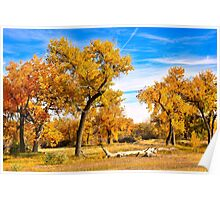 Simply Autumn  Poster