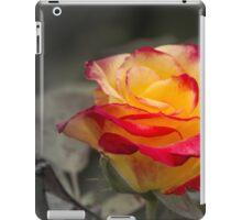 roses in the garden iPad Case/Skin