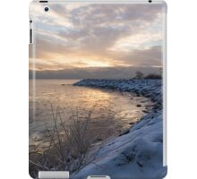Ice Dawn iPad Case/Skin