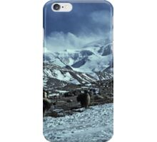 yaks on the way to Shishapangma, Tibet iPhone Case/Skin