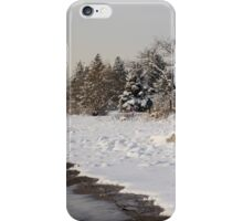 The Snow Just Stopped - a Winter Beach on Lake Ontario iPhone Case/Skin