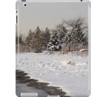 The Snow Just Stopped - a Winter Beach on Lake Ontario iPad Case/Skin