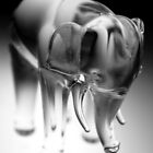 Glass Elephant by Victoria Kidgell
