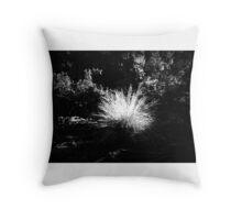 Grass at Cataract Gorge Launceston Tasmania Throw Pillow