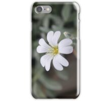 Small White Flower iPhone Case/Skin