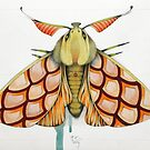 pink moth by federico cortese