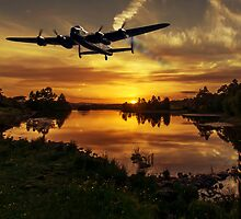 Flying home at sunset by Sam Smith