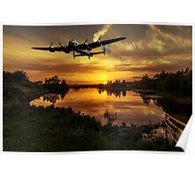 Flying home at sunset Poster