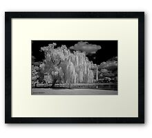 Tree, Clouds and a Pond Framed Print