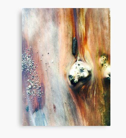 Sea worn Island Log Seattle 2016 Canvas Print