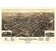 Aerial View of Tallahassee, Florida (1885) Photographic Print