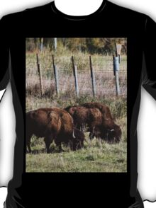 Good thing they fenced out those silly humans!  T-Shirt