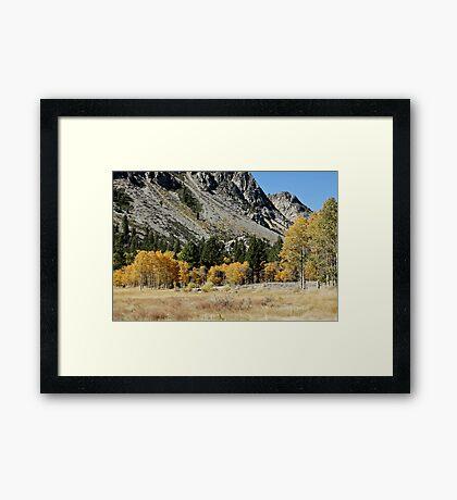 Fall JZ7A7302 V3 Framed Print