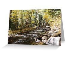 Fall JZ7A7398 V2 Greeting Card