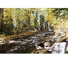 Fall JZ7A7398 V2 Photographic Print