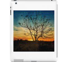 Rainbow Dusk  iPad Case/Skin