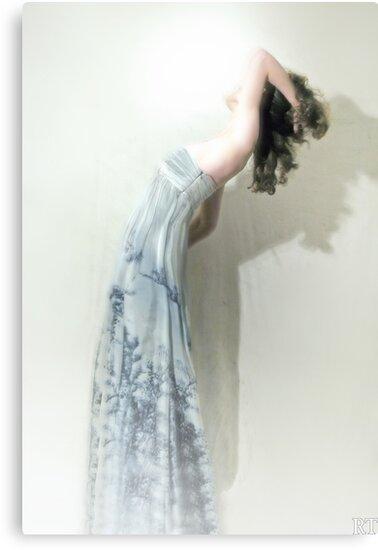The Swan by Rebecca Tun