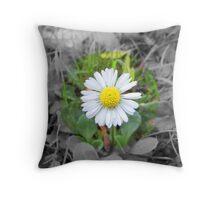 Last Daisy Throw Pillow