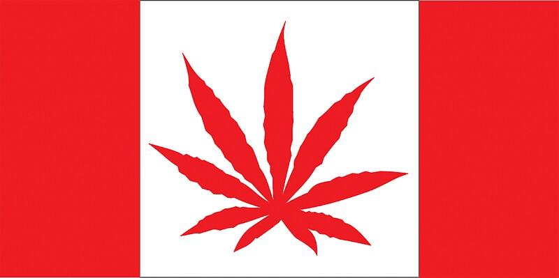 Quot Canadian Flag Marijuana Leaf Quot Stickers By Marijuanatshirt