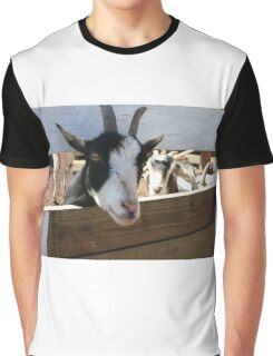 Goat looking through fence for food Graphic T-Shirt