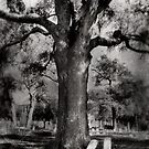 Tombstone Tree by debidabble