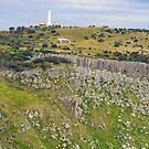 Tasman Island Lighthouse by Harry Oldmeadow