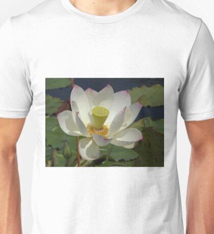 Water Lily Close-Up,  New York Botanical Garden, Bronx, New York T-Shirt