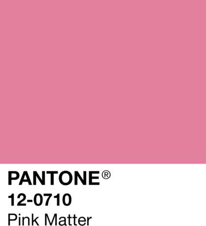 Pink Matter Color Swatch Sticker