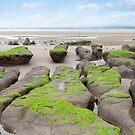 green mud banks at Beal beach by morrbyte