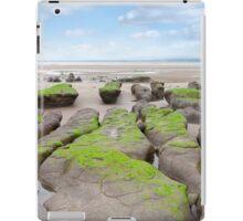 green mud banks at Beal beach iPad Case/Skin