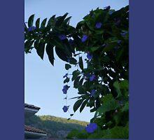 Wild Blue Morning Glory From Turkey........... Unisex T-Shirt