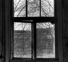 22.10.2014: Window View by Petri Volanen