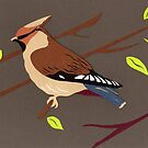 Waxwing by Lisa Richards