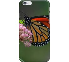 Late September Stunning Monarch iPhone Case/Skin