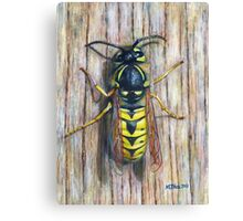 Acrylic painting, Wasp nature art Canvas Print