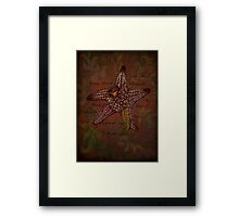 Starfish Anatomy Framed Print