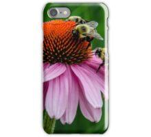 Springtime Feast iPhone Case/Skin