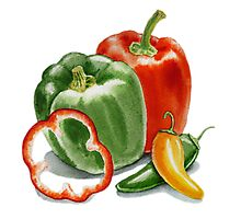 Bell Peppers And Jalapeno  Photographic Print