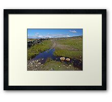 Dales Walking Framed Print
